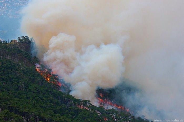 Из-за лесных пожаров День города в Ялте отметят без размаха
