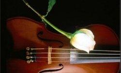 Романса трепетные звуки, концерт